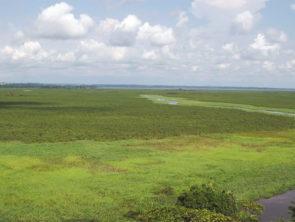 Sécurité alimentaire, résilience et agro-écologie : première évaluation du programme SARA
